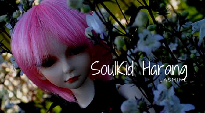 SoulKid Harang